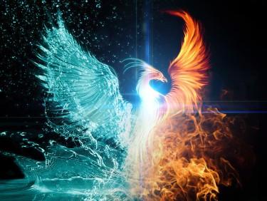 phoenixheart2
