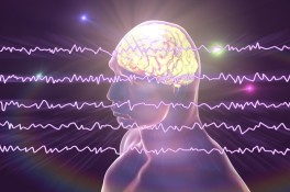 brainwaves1